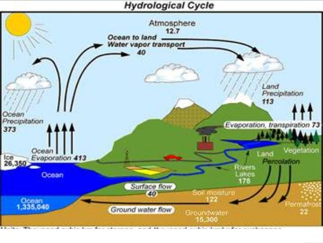 groundwater hydrology and pollutant transport solution manual
